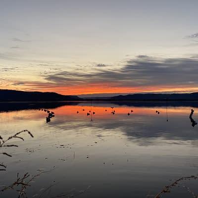 Sunrise, sunset, duck hunting