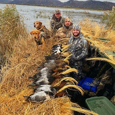 Puppy, duck dog, dog training, Labrador, epic guide service